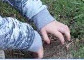 foto bambino che tocca la terra